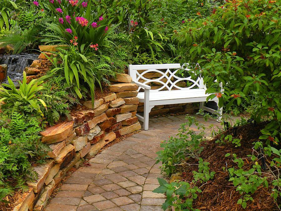 Garden Photograph - White Bench In The Garden by Rosalie Scanlon