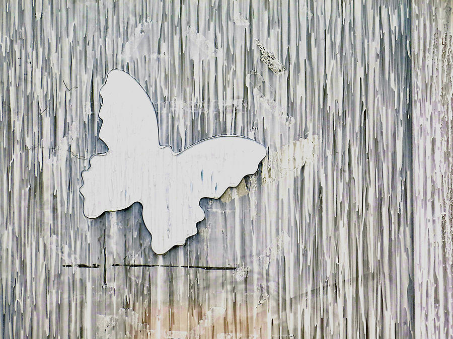 White Butterfly by Kathy Corday