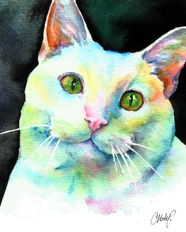 White Cat by Christy Freeman Stark