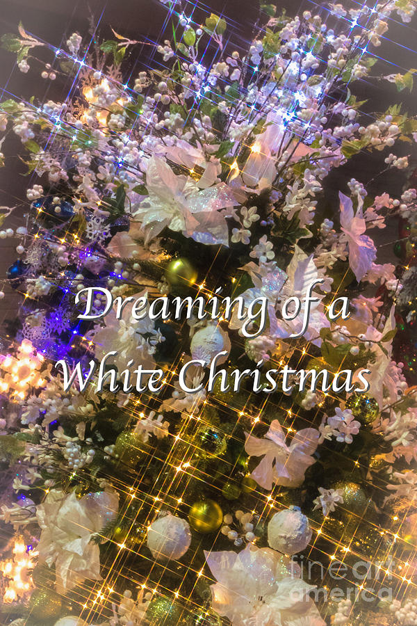 Snow Photograph - White Christmas Card by Susan Grube