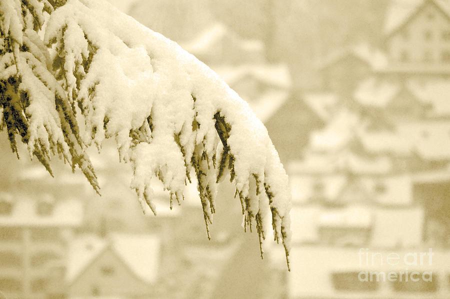 White Christmas - Winter In Switzerland Photograph