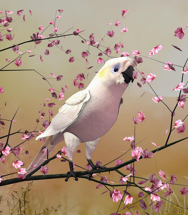 White Cockatoo by John Junek