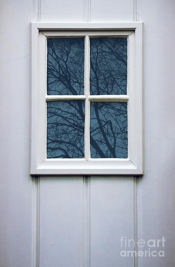 Door Photograph - White Door Detail by Carlos Caetano