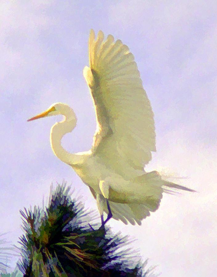 Bird Digital Art - White Egret In Tree by Joel Cohen