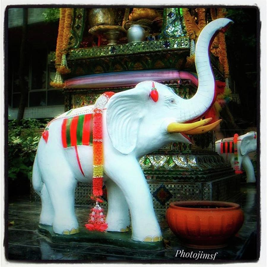 Thailand Photograph - White Elephant. Meaning A Big Expensive by Mr Photojimsf