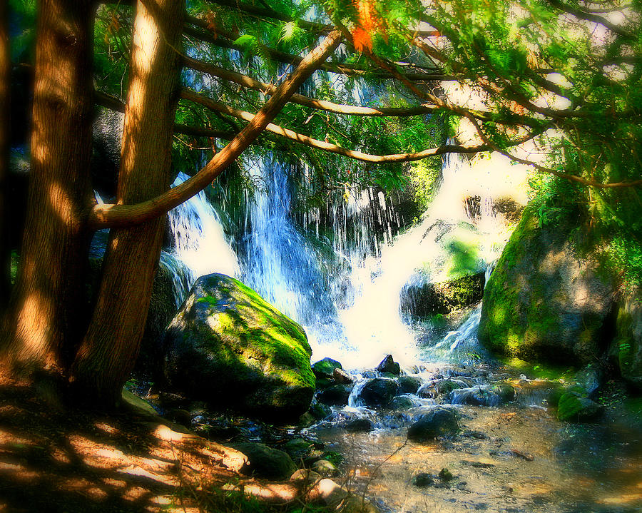 Waterfall Photograph - White Falls by Perry Webster