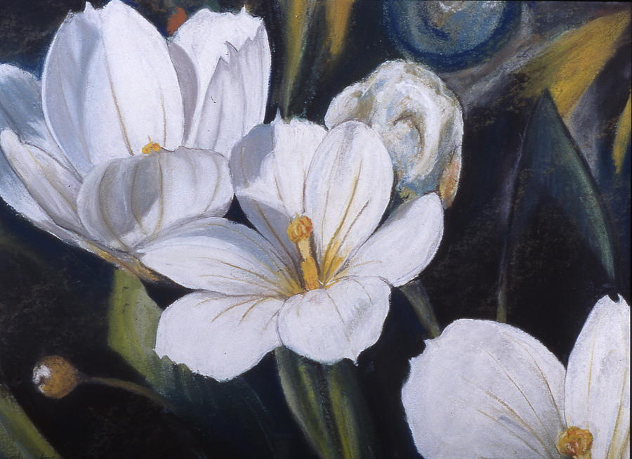 White flower study painting by victoria heryet flower painting white flower study by victoria heryet mightylinksfo