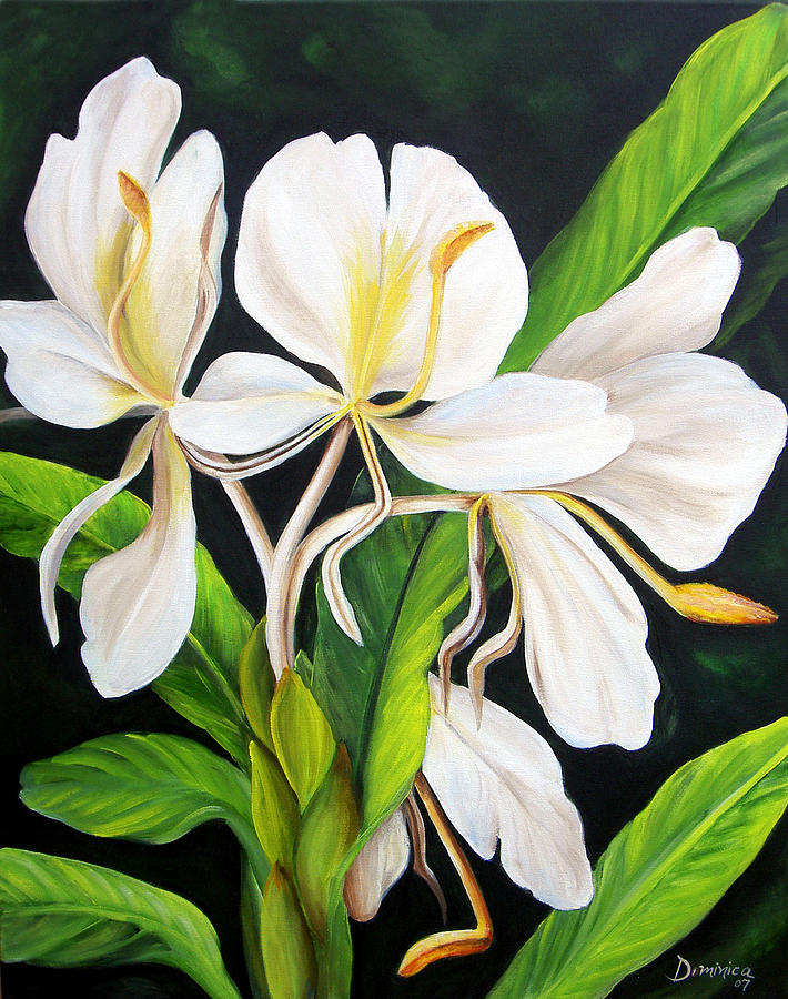 White ginger painting by dominica alcantara floral painting white ginger by dominica alcantara mightylinksfo