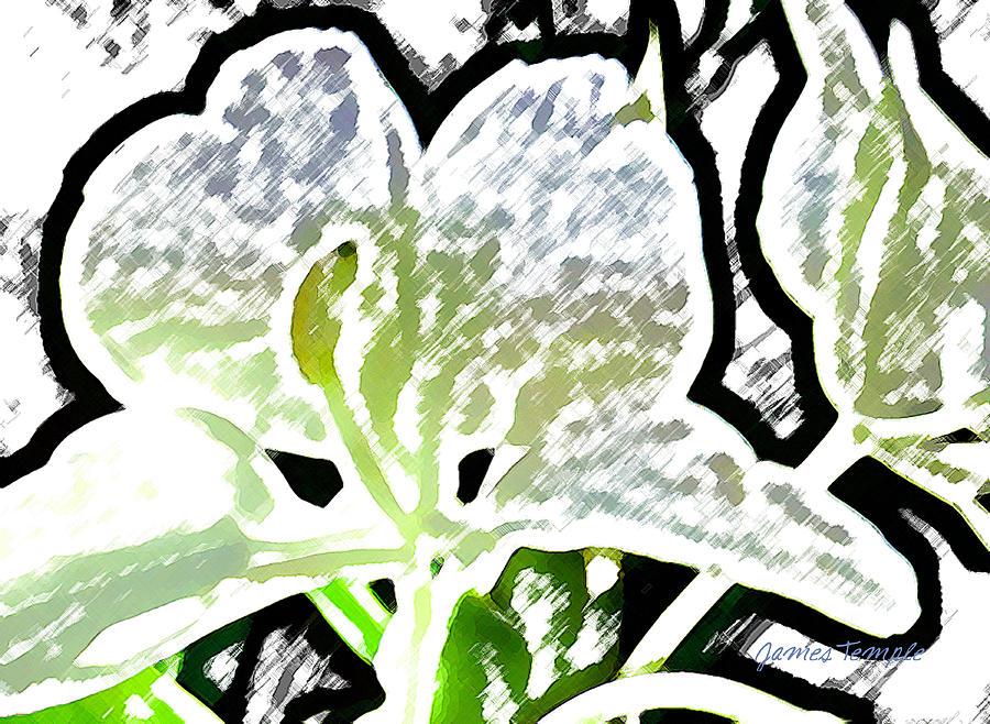 Ginger Digital Art - White Ginger by James Temple