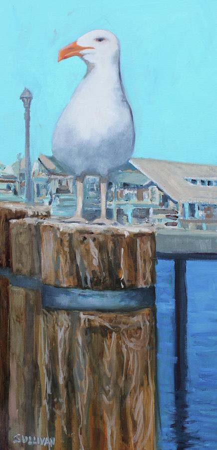 White Gull by Dennis Sullivan