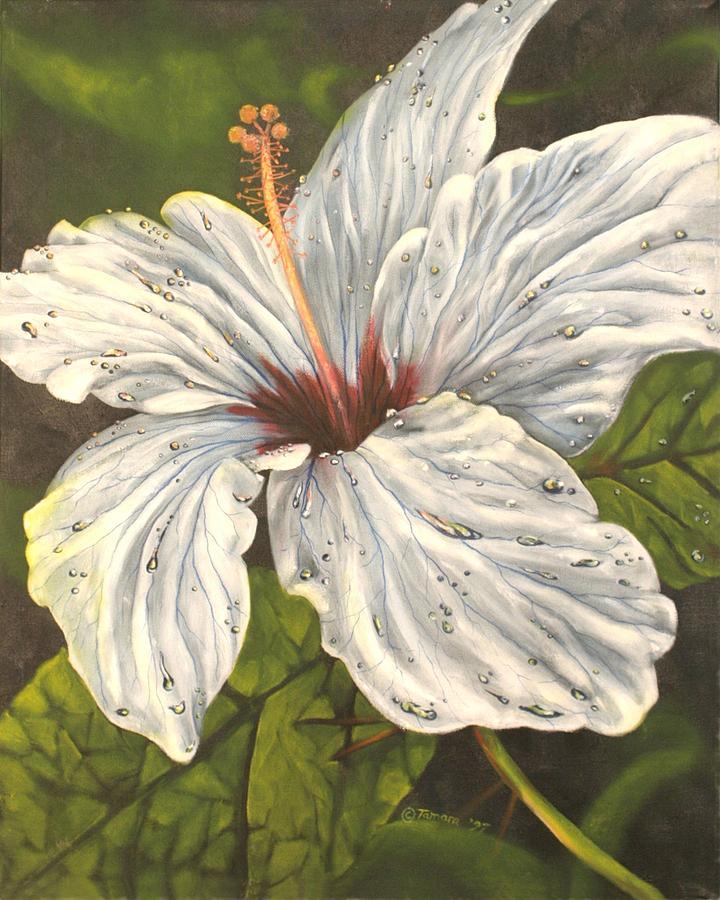 White Hibiscus Flower Painting - White Hibiscus by Tamara Kulish