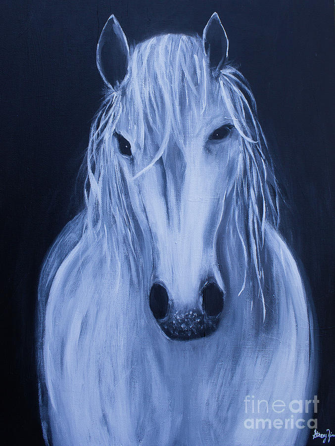 White Horse by Stacey Zimmerman