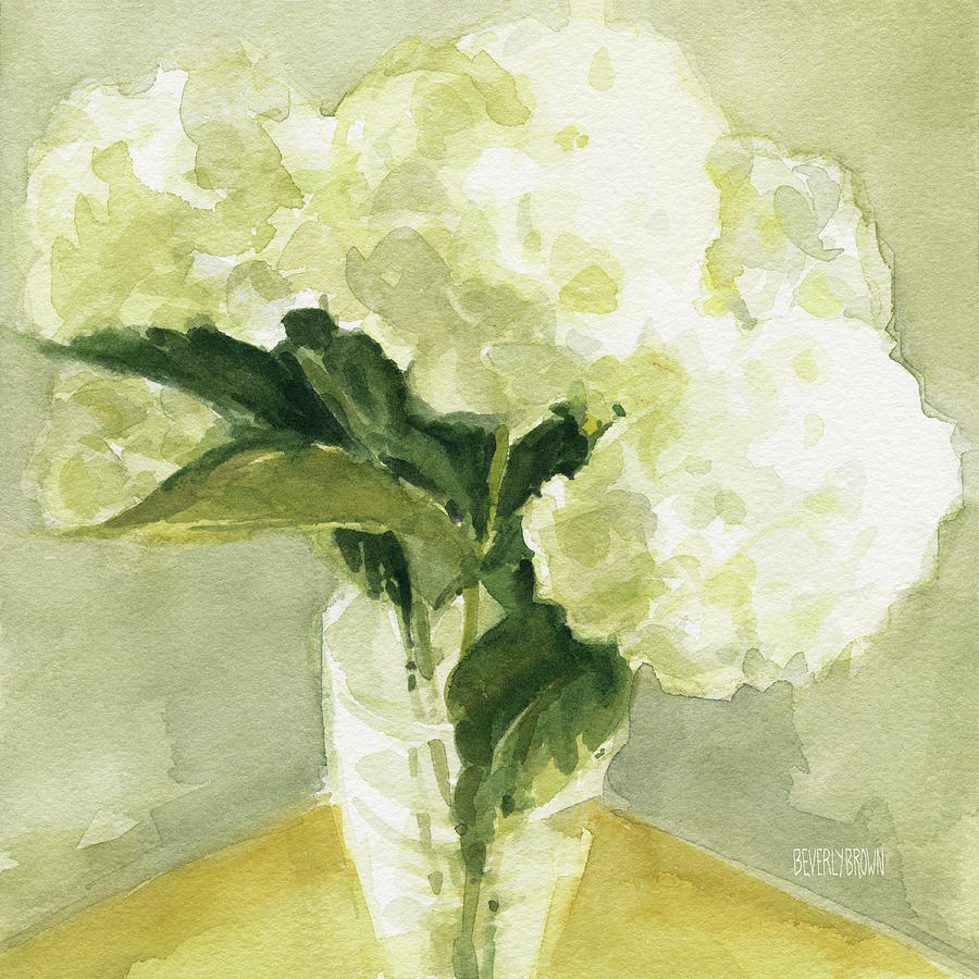 Floral Painting - White Hydrangeas Morning Light by Beverly Brown