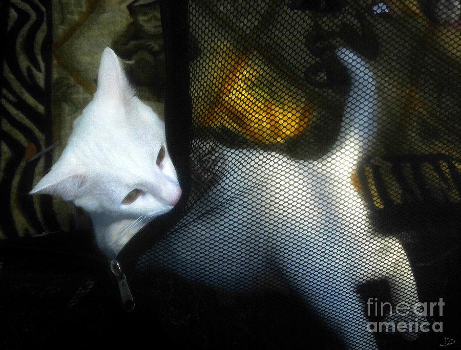 Kitten Painting - White Kitten by David Lee Thompson