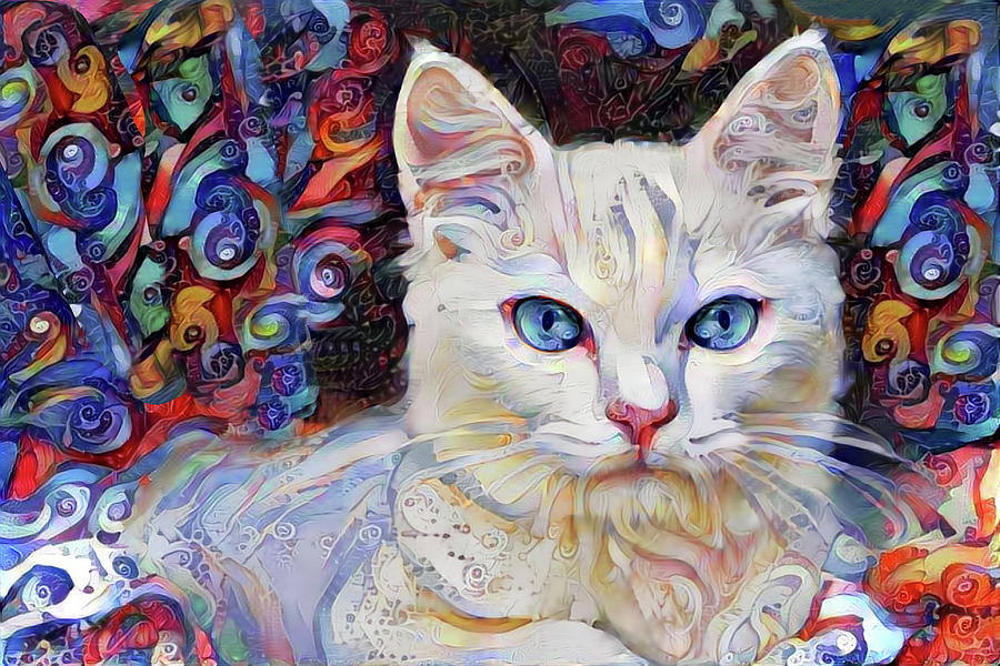 White Cat Photograph - White Kitten With Blue Eyes by Peggy Collins
