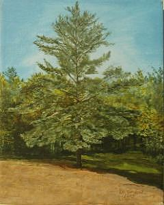 Pine Tree Painting - White Lake by Leah  Tomaino