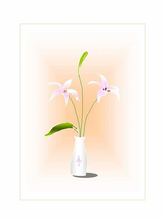 White lily Digital Art by Mousumi Mani