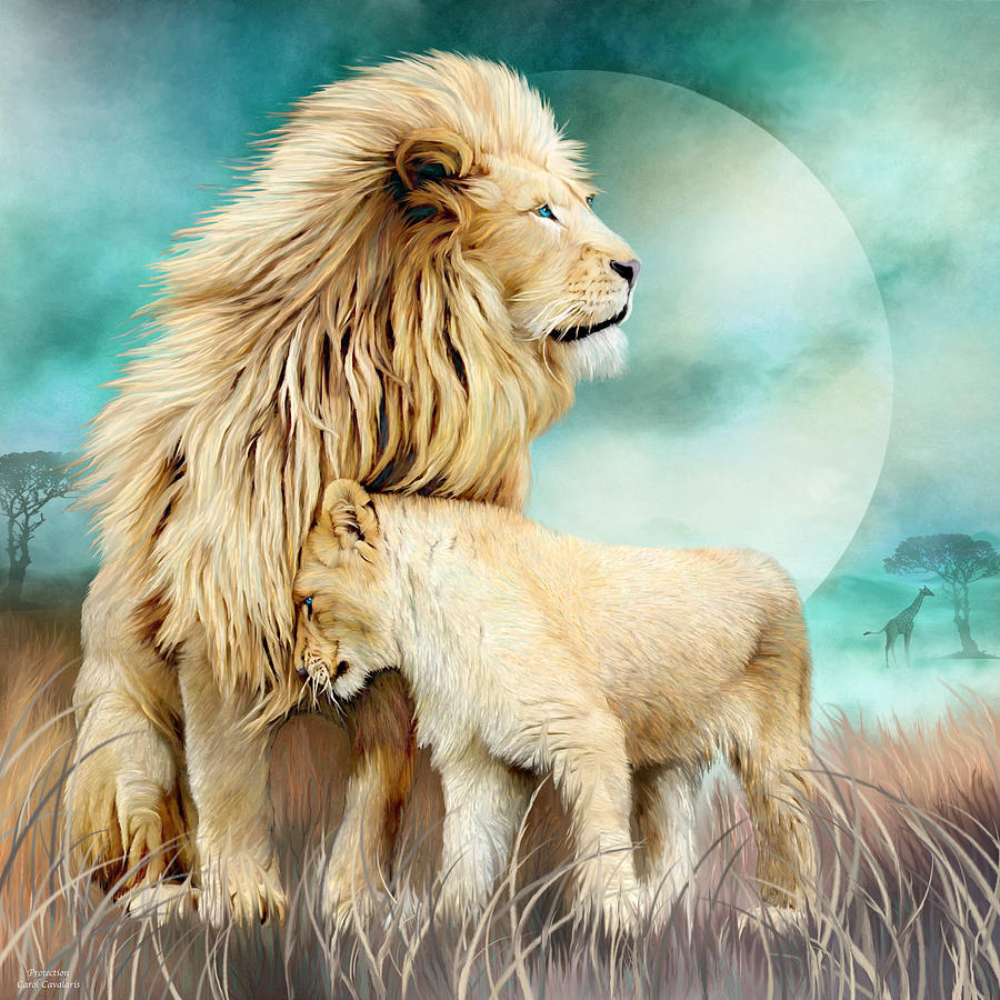 White Lion Family - Protection by Carol Cavalaris