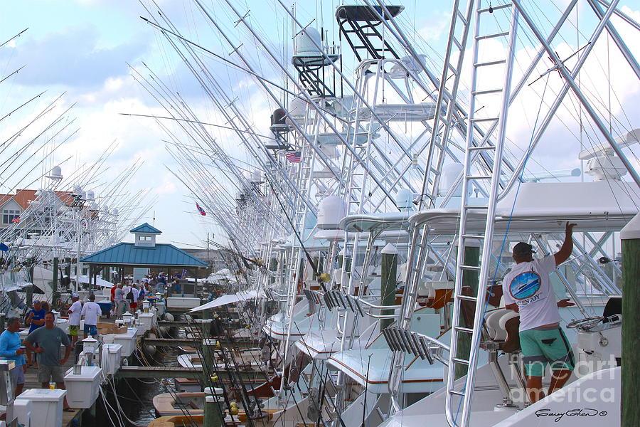 White Marlin Photograph - White Marlin Open Docks by Carey Chen