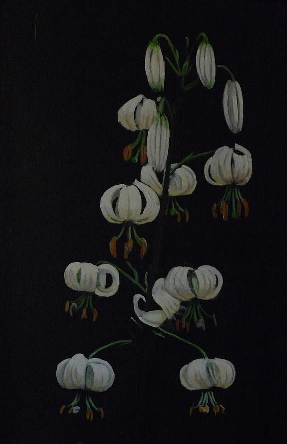 White Martagon Lilly Painting