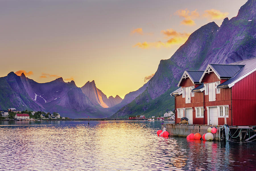 White night in Reine by Dmytro Korol