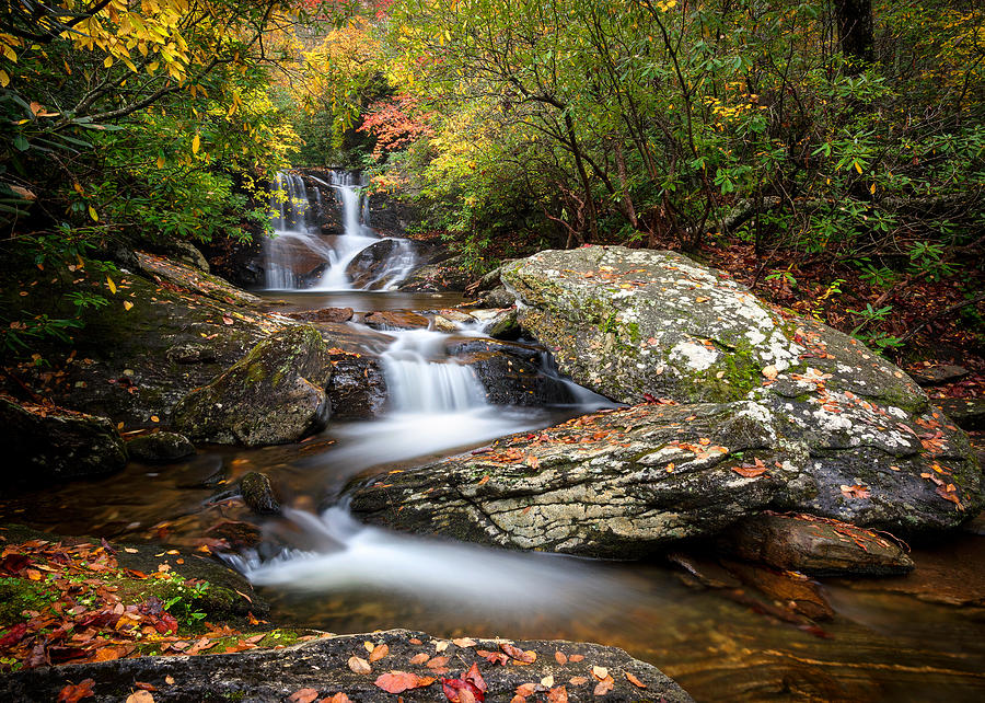 White Oak Falls, Pisgah National Forest by Tommy  White