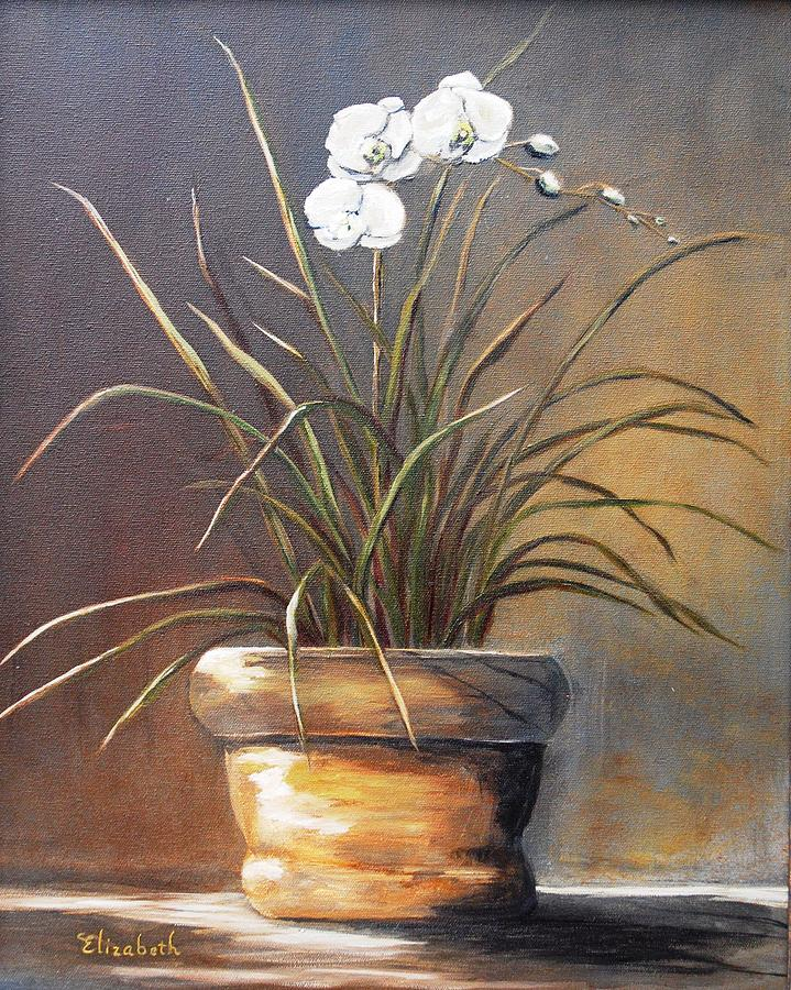 Orchid Painting - White Orchid In Oil by Beth Maddox