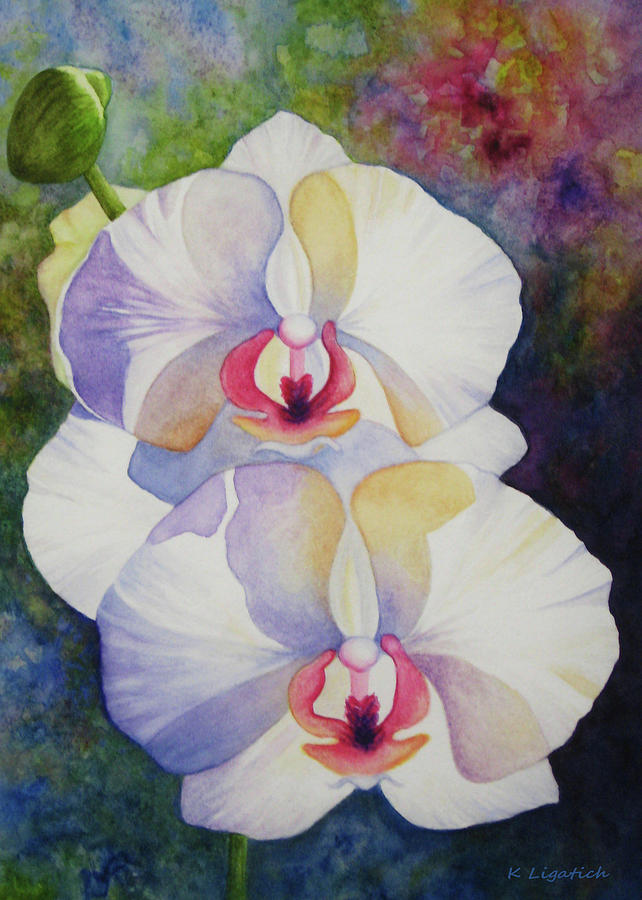 Orchid Painting - White Orchids by Kerri Ligatich