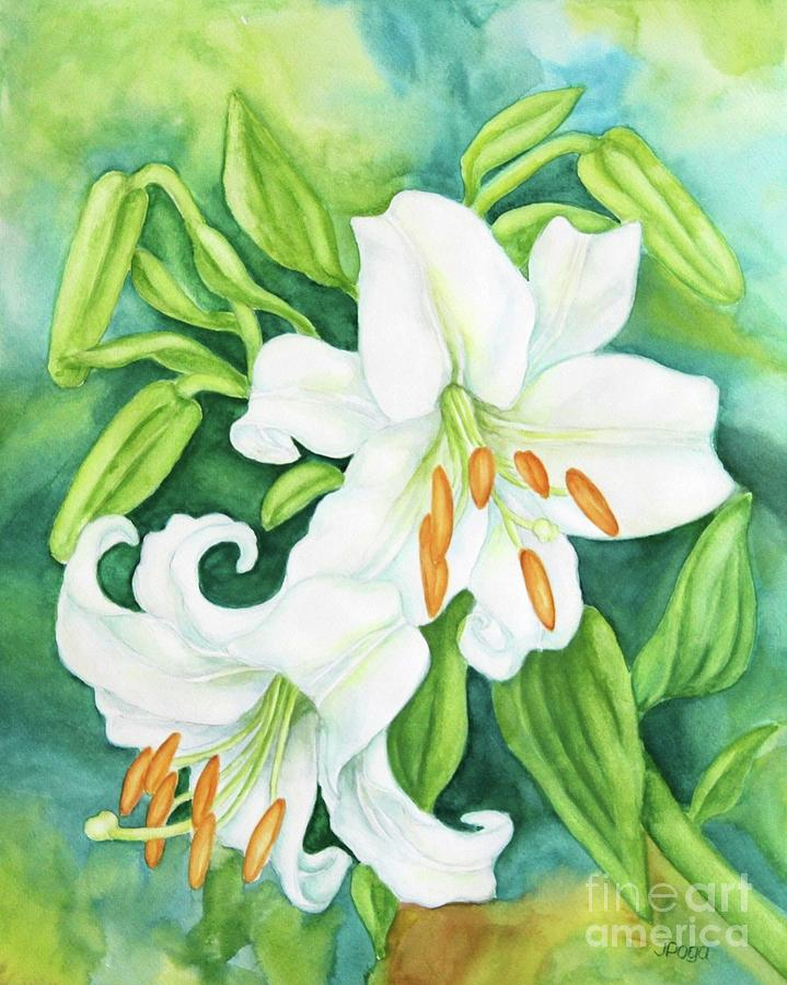 White oriental lilies by Inese Poga