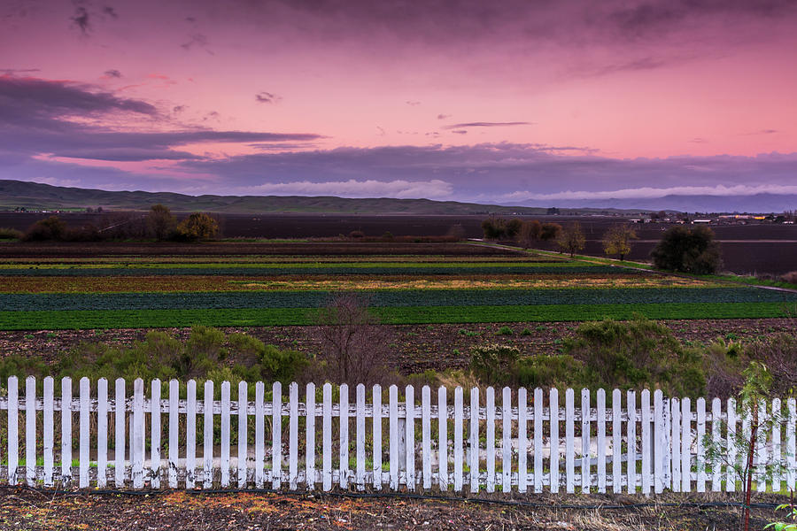 Landscape Photograph - White Picket Fence Looking Over Farmland  by Javier Flores