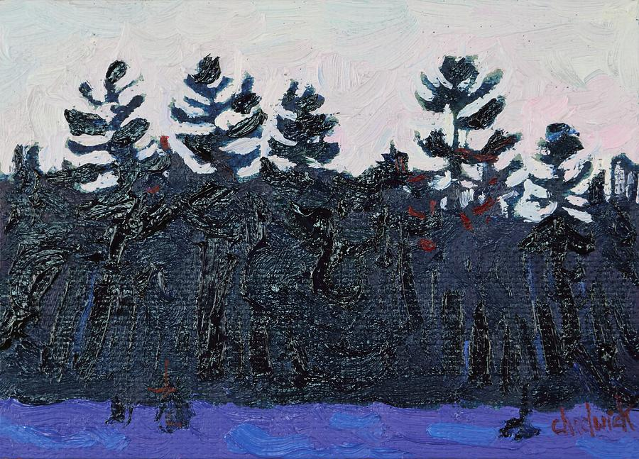White Painting - White Pine Sunrise by Phil Chadwick