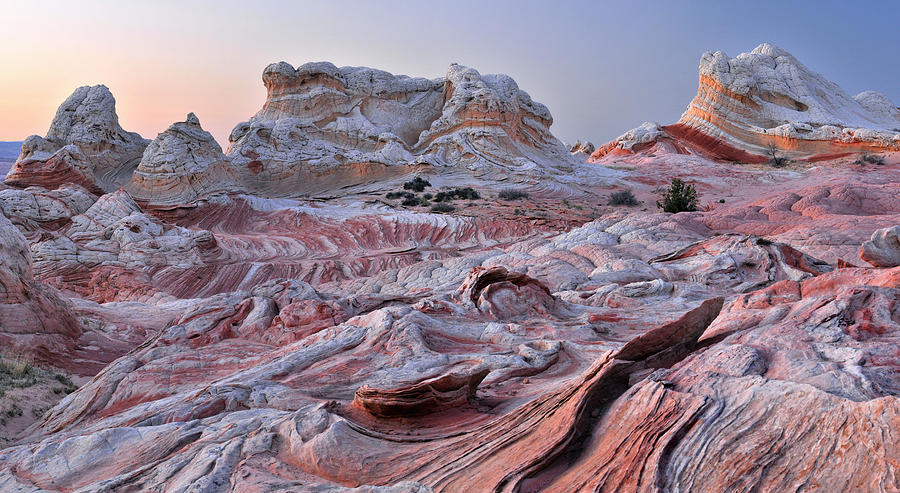 Paria Canyon Photograph - White Pocket Sandstone Fins by Dean Hueber