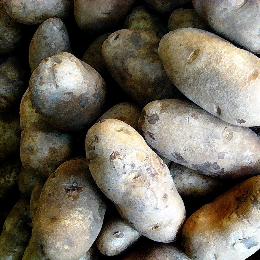 White Potato by John Vincent Palozzi