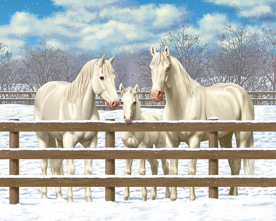 Horses Painting - White Quarter Horses In Snow by Crista Forest
