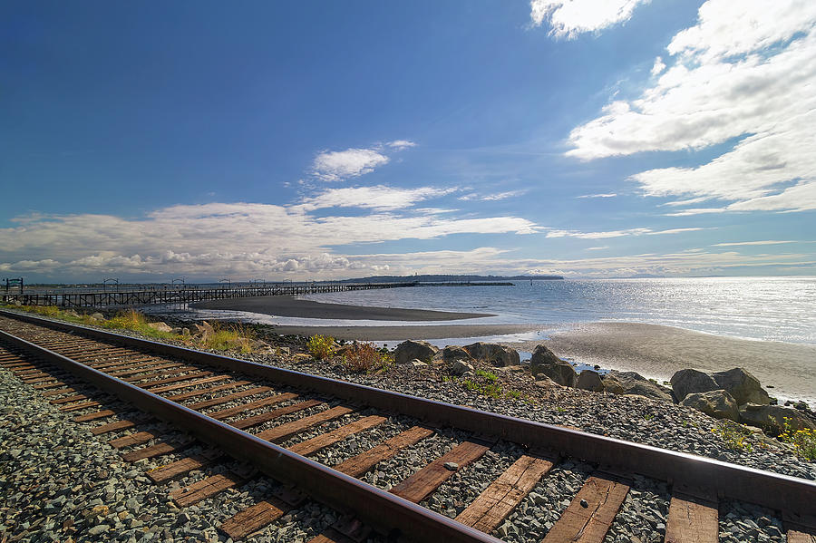 White Rock Photograph - White Rock Promenade in British Columbia by David Gn