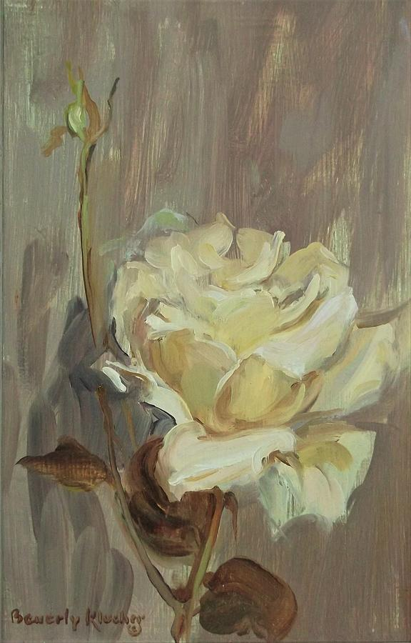 White Rose And Bud by Beverly Klucher