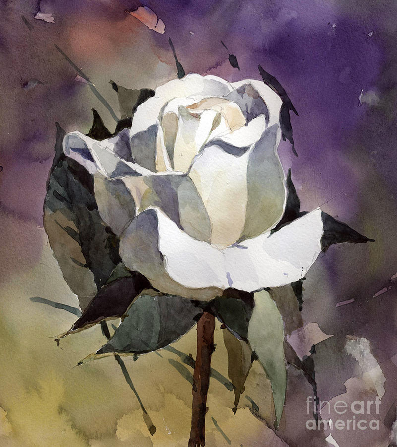 Watercolor Painting - White Rose by Natalia Eremeyeva Duarte