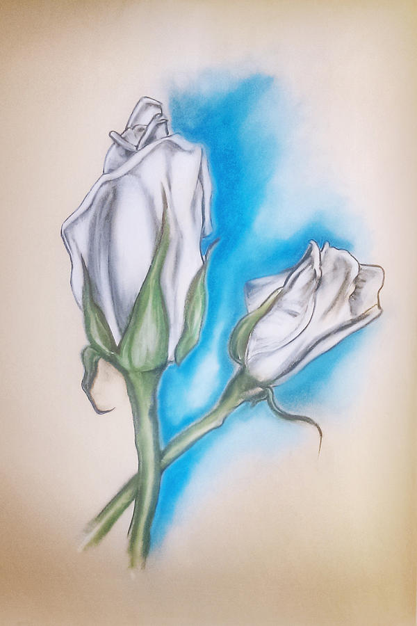 Pastels Pastel - White Roses by Keith A Link
