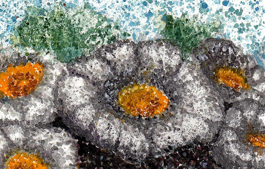 Watercolor Painting - White Saguaro Cactus Blossom by Cynthia Ann Swan