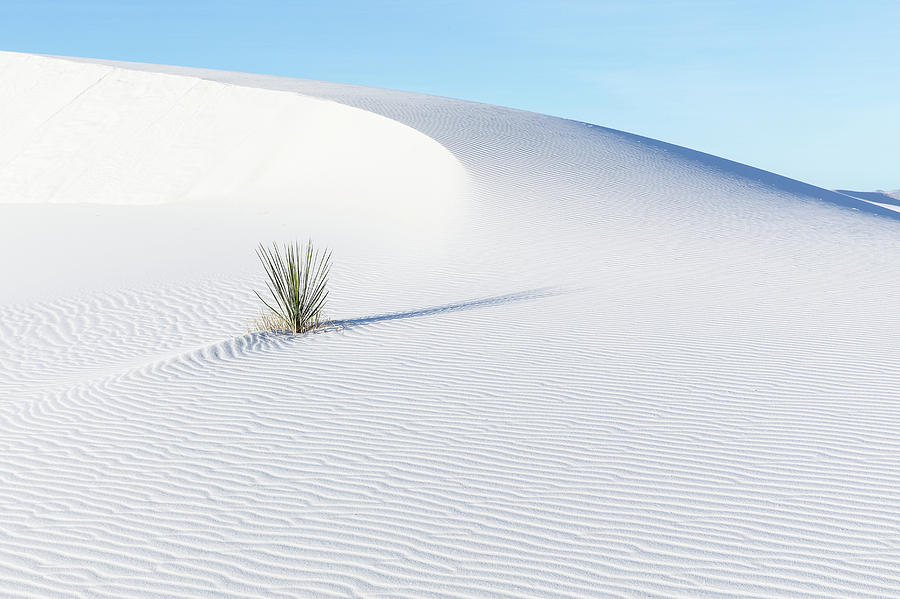 White Sand Dunes New Mexico One by Bill Swindaman