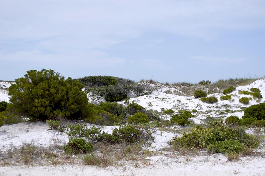 Sand Photograph - White Sand Dunes by Tina B Hamilton