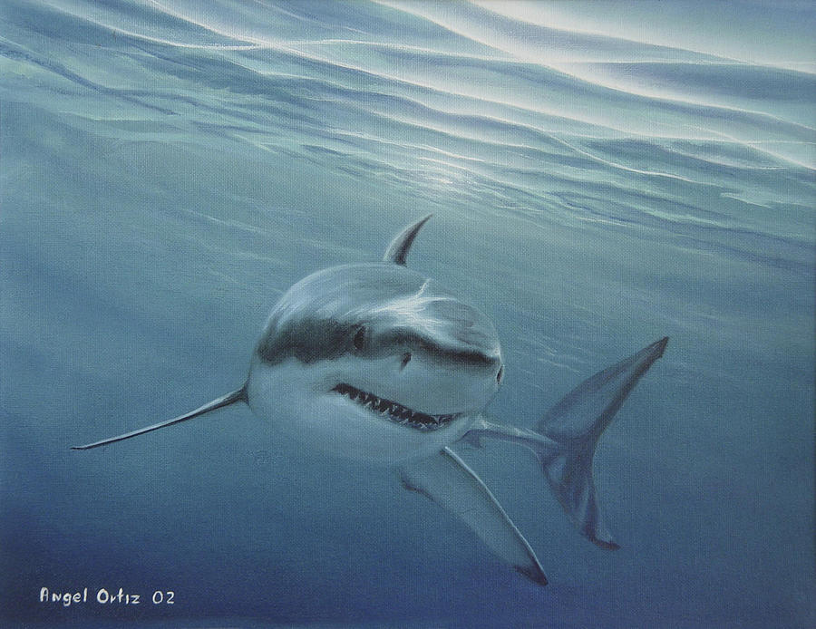 Shark Painting - White Shark by Angel Ortiz