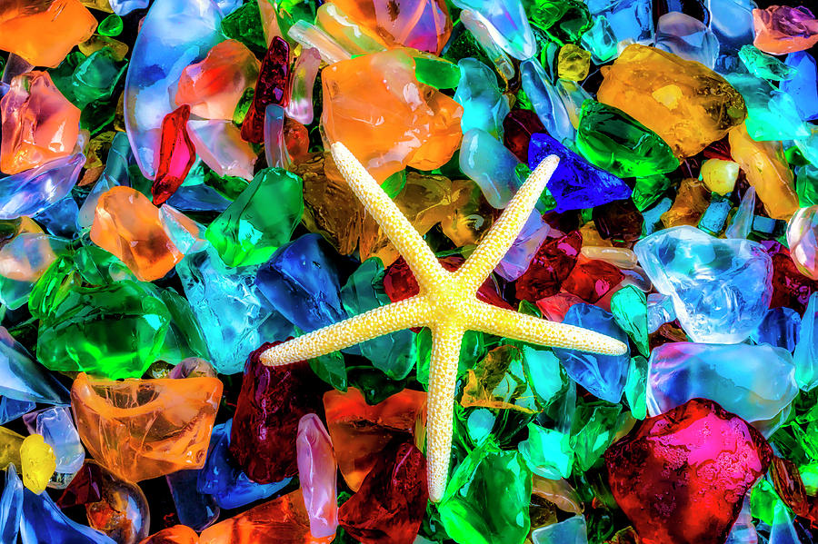 Color Photograph - White Starfish On Sea Glass by Garry Gay