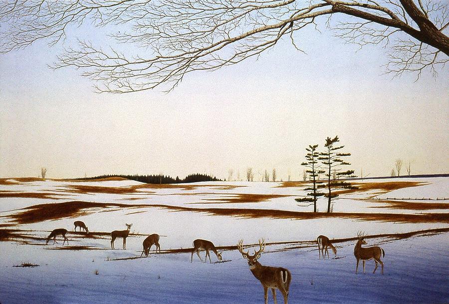 White-Tails by Conrad Mieschke
