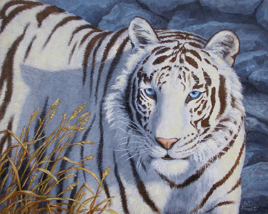 Cat Painting - White Tiger - Crystal Eyes by Crista Forest