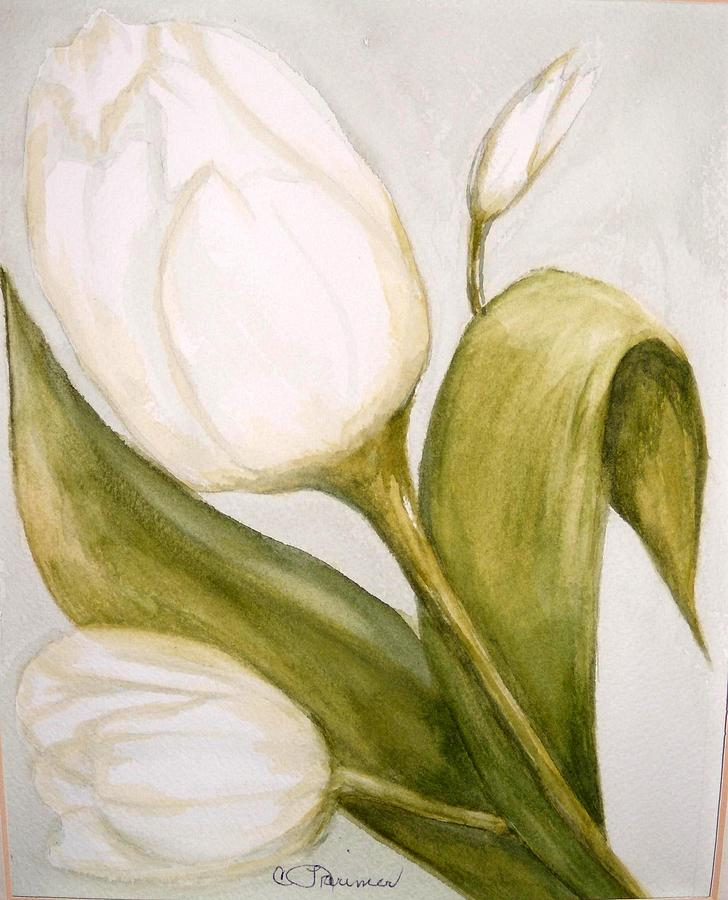 White Tulip Painting by Constance Larimer