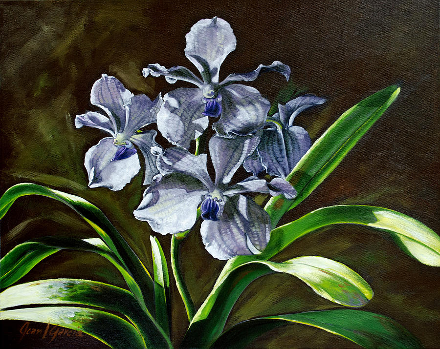 Morning Vanda Painting