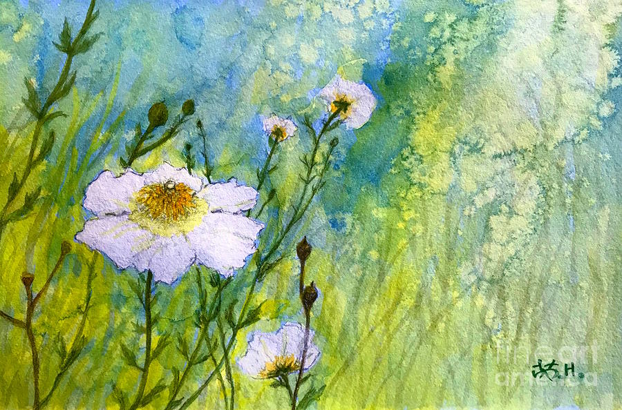 Flowers Painting - White Wild Poppies by Wonju Hulse