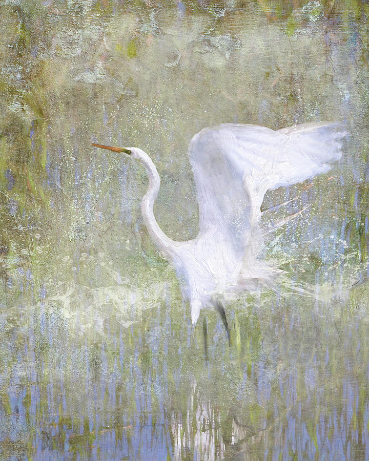 White Wings by Karen Lynch