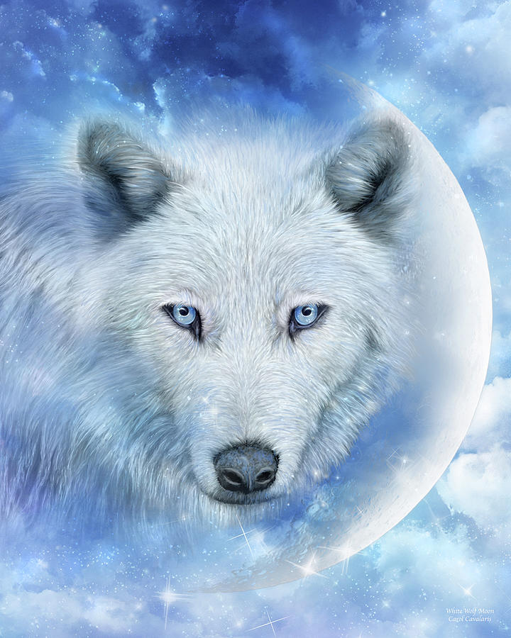 White Wolf Moon by Carol Cavalaris